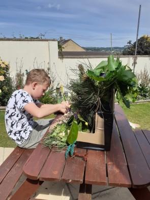 Euan making rainforest